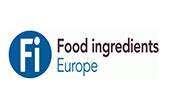 Fi Europe 2017