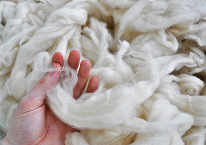 Mixed Outlook for South African Wool
