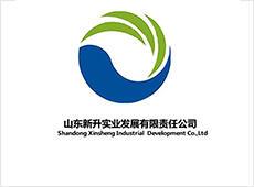 Shandong Xinsheng