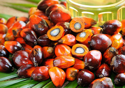 Unilever Discloses Palm Oil Sources, Could Prompt Widespread Industry Change