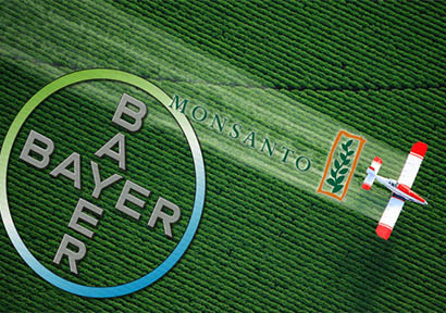 Bayer Makes Open Offer to Buy 26% in Monsanto India