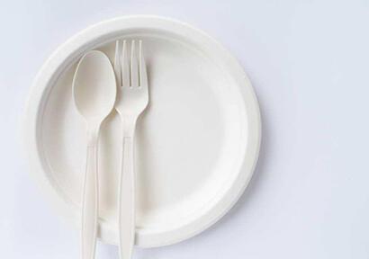 巴西树脂供应商推出生物质塑料