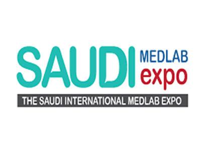 Saudi PPPP 2019