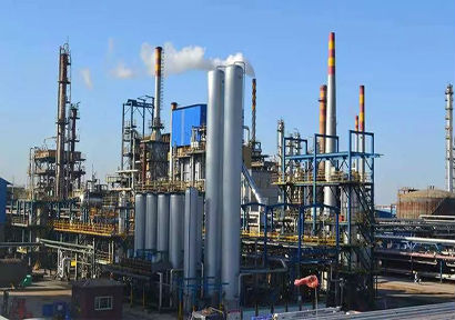 Cefic: the coexistence of