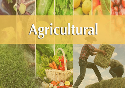 In 2018, the net sales of agricultural products amounted to 300 billion yuan