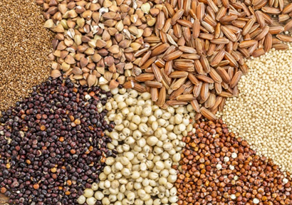 Heihe-Food-Bureau-Grasping-Policy-Opportunity-to-Help-Grain-Enterprises-to-Land