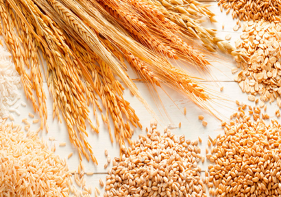 Abaga Banner of Inner Mongolia: Rapid Detection of Agricultural Products