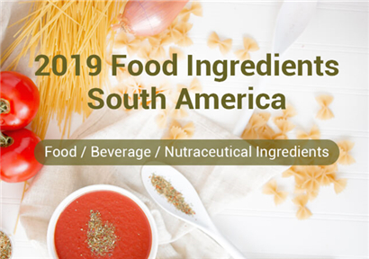 2019 Food Ingredients South America