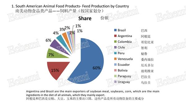 Latin-America-feed7