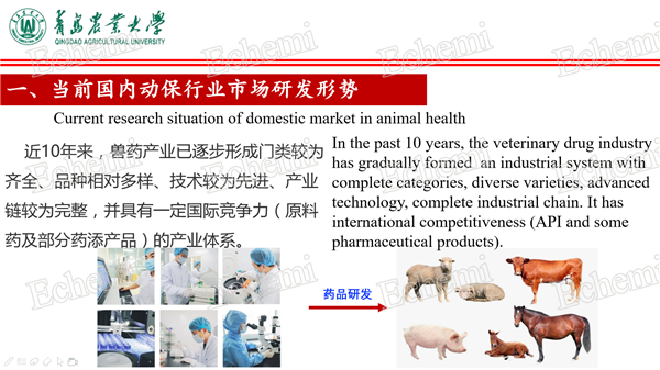 China-animal-health3