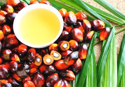 Unilever teamed up with Google Cloud to develop sustainable palm oil