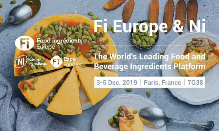 Fi Europe & Ni 2019