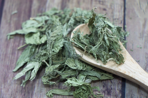 2021-2025 stevia extract industry in-depth report