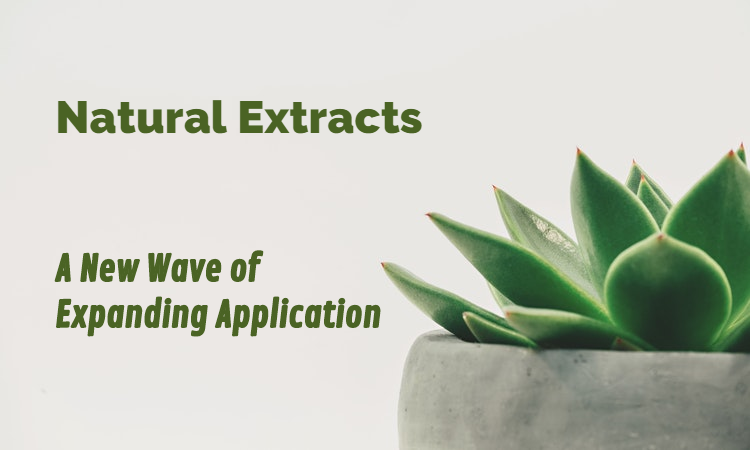 Natural Extracts: A New Wave of Expanding Application