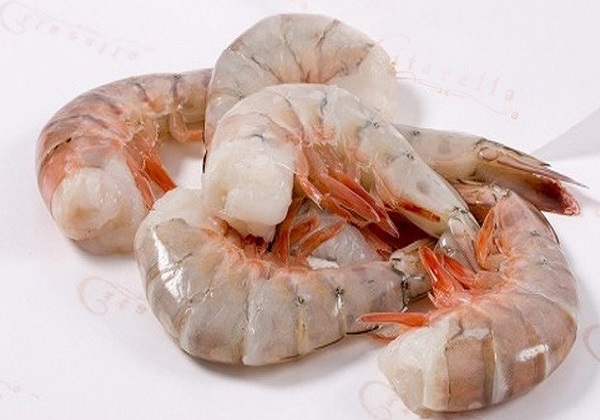 Scientists extract protein from shrimp processing wastewater