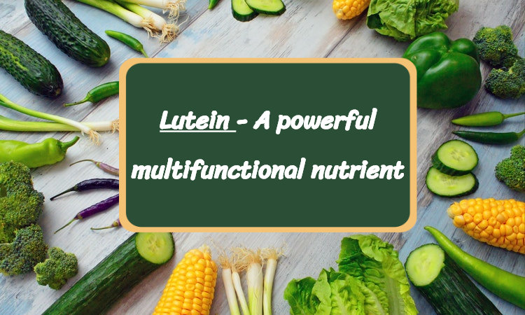 Lutein - A powerful multifunctional nutrient