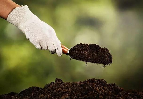 Potash fertilizer prices continue to rise!