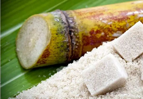 JD promotes edible fiber active anti-aging ingredient, derived from sugar cane