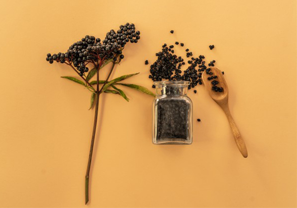 How elderberry became a big hit in the global immunization market